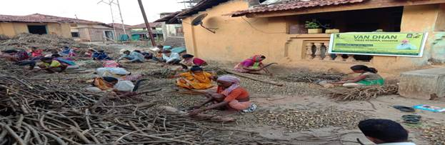 Van Dhan Vikas Yojana – Empowering Tribals across India