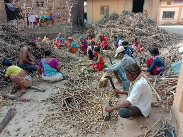 Van Dhan Kendras in Maharashtra: Helping Transform Lives and Livelihoods