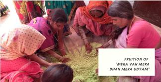 Van Dhan Yojana: Promoting enterprise among rural women in Rajasthan