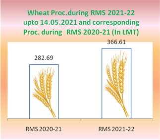 Wheat procurement up by 30% in comparison to corresponding period of last year