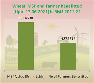 12.59 % more wheat procured this year in comparison to last year's corresponding period