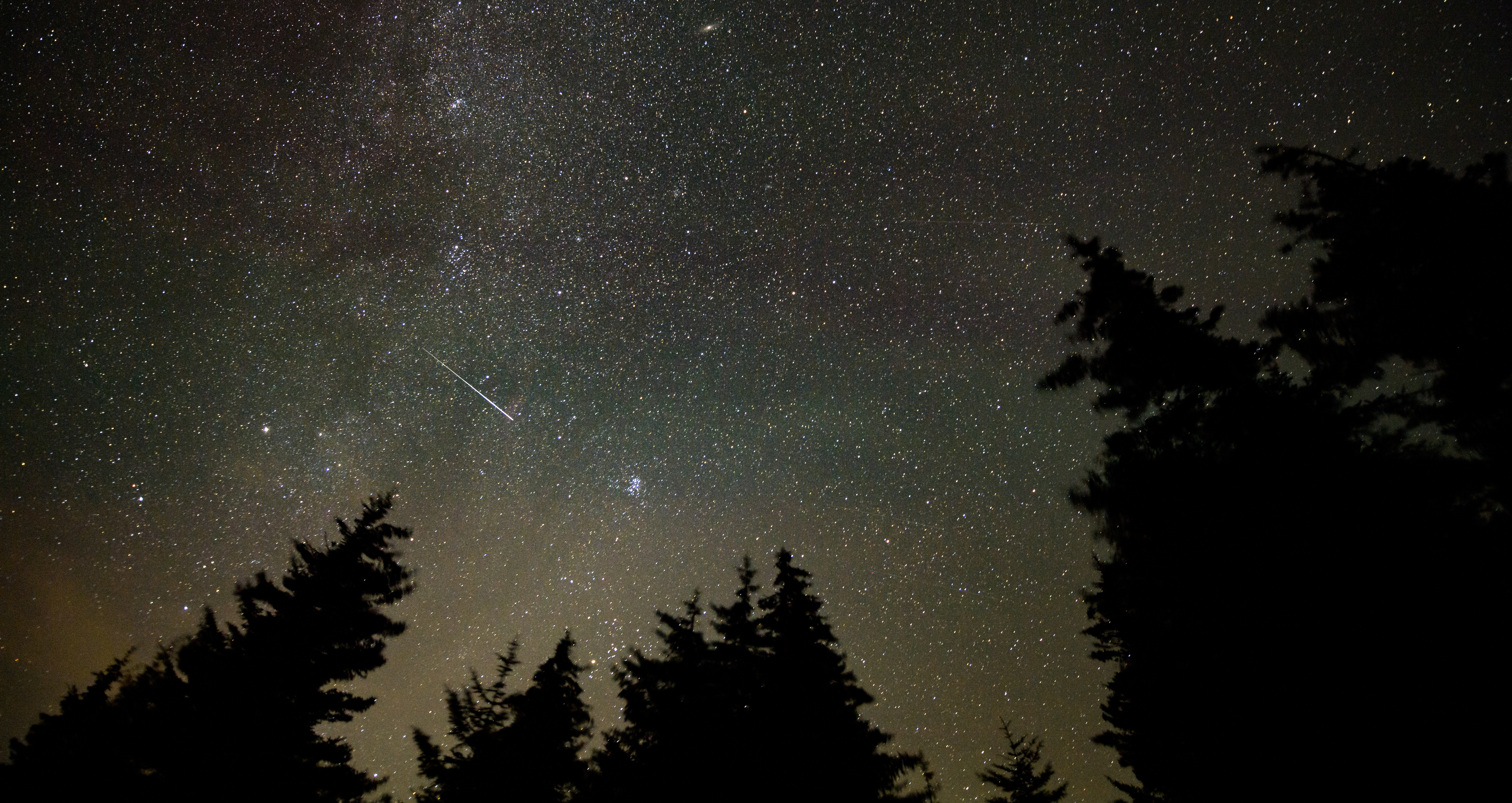 Behold! The Perseid Meteor Shower